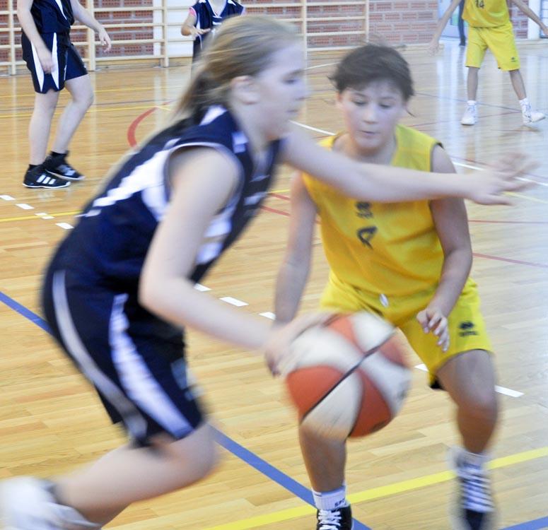 Festival ženske košarke na Bregima