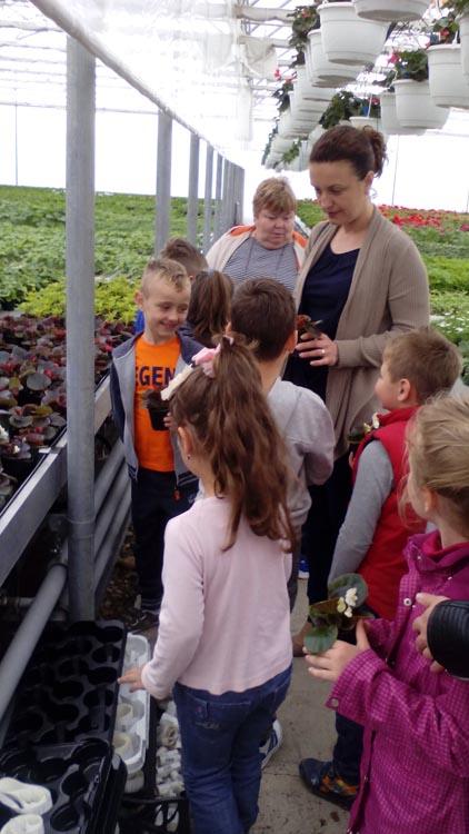 Potočići u vrtnom centru Agro kuća