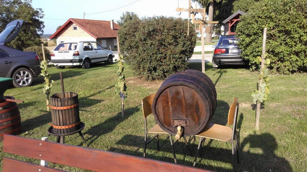 Berba grožđa u Glogovcu