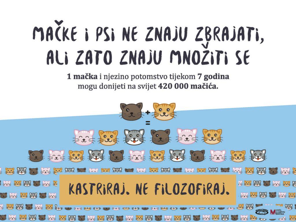 Važnost trajne sterilizacije i kastracije pasa i mačaka
